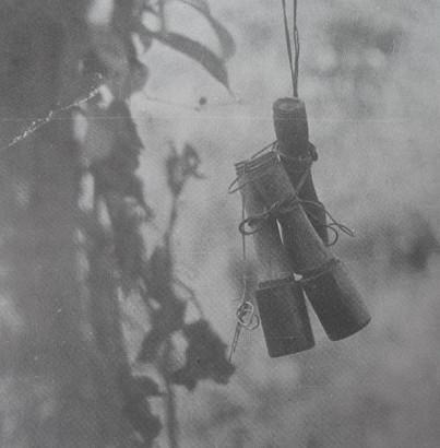 Chúng tôi đi vào một đoạn chiến lũy đầy chướng khí của tử thi, trên đầu lúc nào cũng có những chùm lựu đạn, cài trên cành cây, sẵn sàng nổ khi người vấp phải bẫy mìn. ảnh: NBL