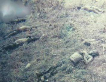 Quân đội nhân dân Trung Quốc tử vong trên đường 22 trong lãnh thổ Việt Nam. Nguồn Ảnh:Hoa Chí Cường.