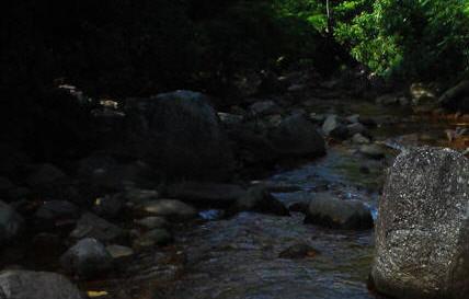 Đi qua con suối trên đỉnh núi Pu Si Lung. Ảnh: La Minh