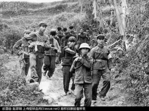 TC di chuyển tù binh VN đến trại Lâm Sơn trong lãnh thổ VN. Nguồn: Tài liệu Huỳnh Tâm.