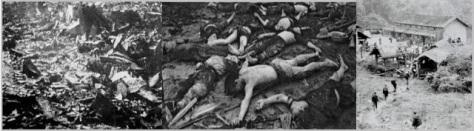 Biệt Kích Trung Cộng vào biên giới lãnh thổ Việt Nam, tập trung nhân dân thảm sát dã man, và thiêu rụi làng Đại Sơn và Tây Lộ trên 714 thường dân. Nguồn: Tài liệu ảnh